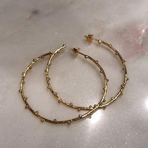New Gorjana Willow Gold Hoop Earrings